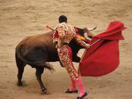 1 matador